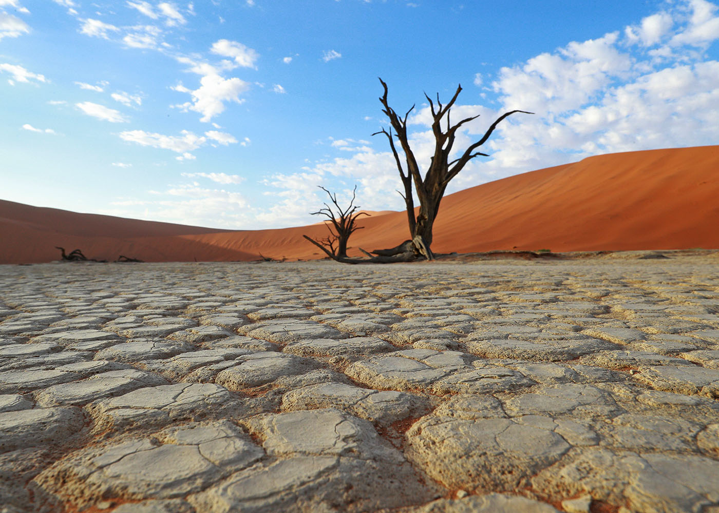 Namibie, Sossusvlei parc Naukluft